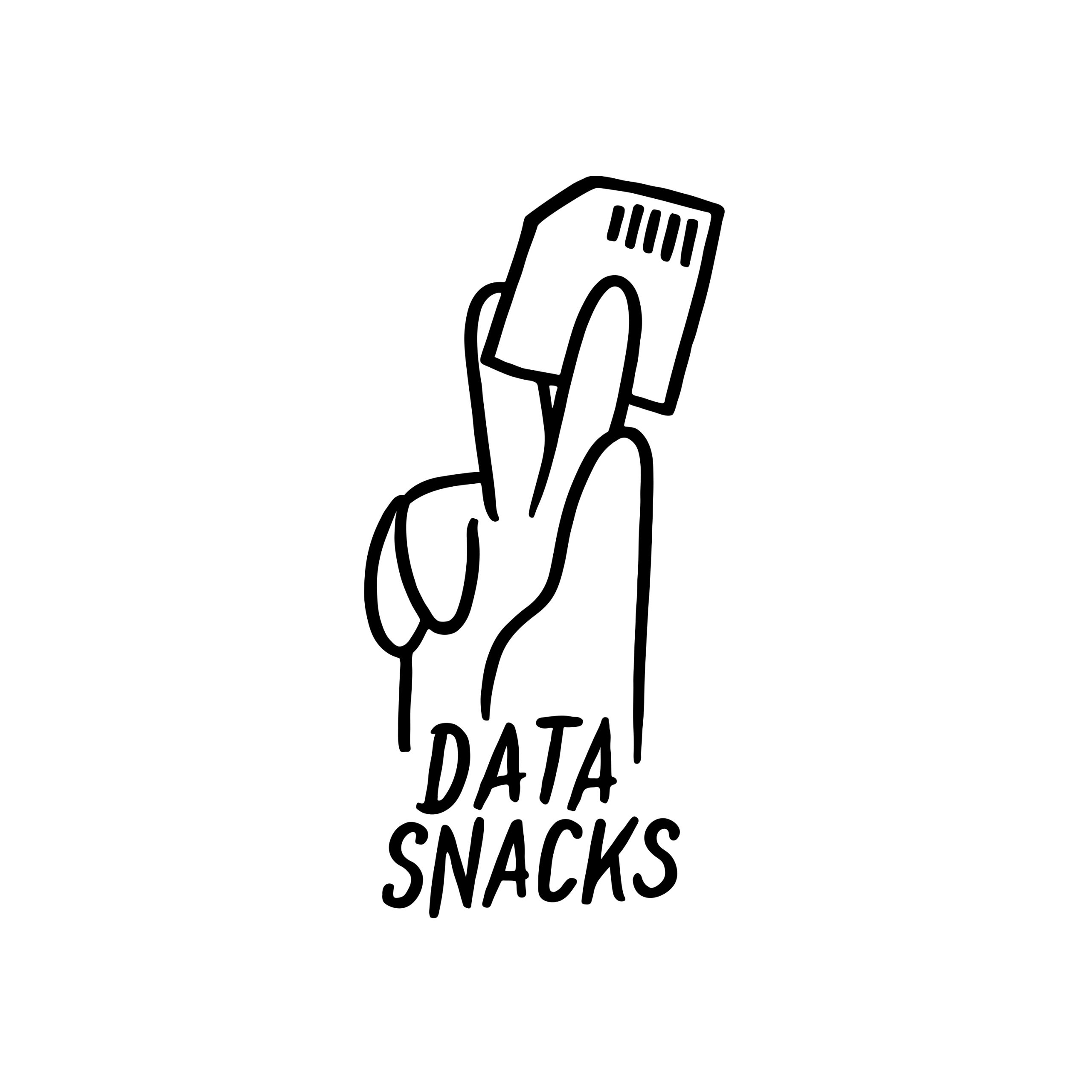 Data Snacks Logo